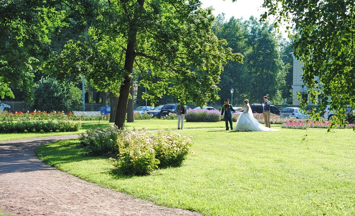 Вокруг дворца разбит симпатичный парк
